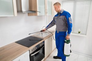 Pest control services in El Paso, TX